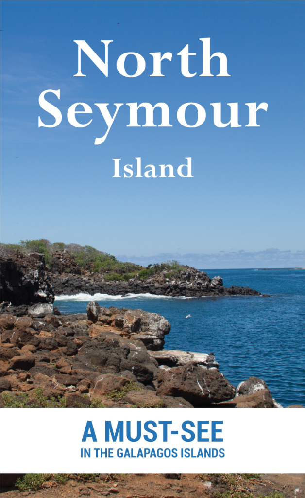 North Seymour Island - A Must See In The Galapagos Islands